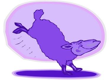 Purple Sheep_001