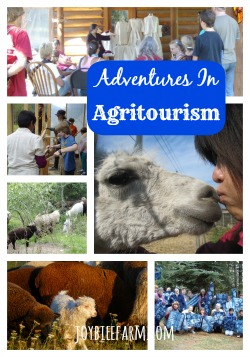 6 Compelling Reasons to Diversify with Agritourism