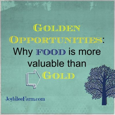Golden opportunities — why food is more valuable than gold