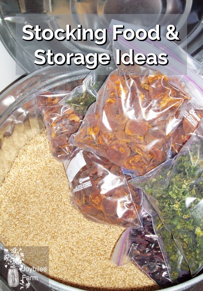A bunch of food in zip lock bags and a big container of wheat berries.