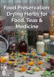 Lots of dried, colourful herbs in bottles and jars.
