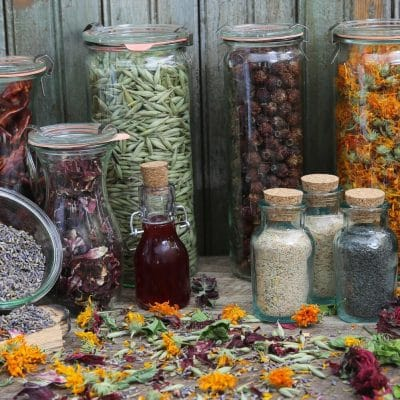 How to Harvest and Dry Herbs