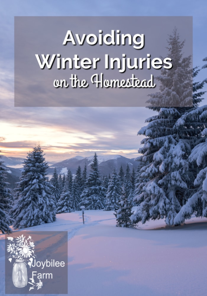 winter scene on the homestead with the text overlay - Avoiding winter Injuries on the Homestead