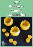 Beeswax Candle Luminaries
