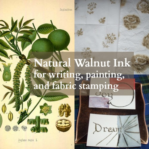 Natural walnut ink for writing