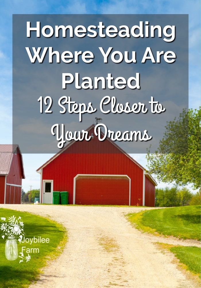 Homesteading Where You Are Planted – 12 Steps Closer to Your Dreams