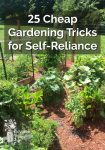 25 Cheap Gardening Tricks for Self-Reliance