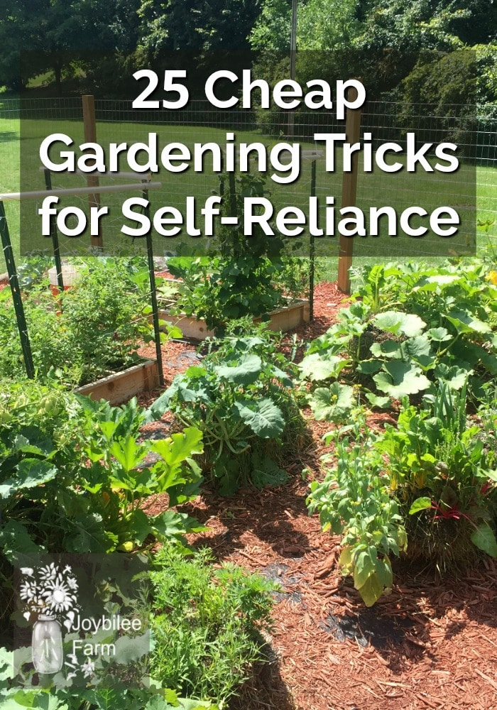 image of a garden of vegetable plants, overlaid with the text 25 Cheap Gardening Tricks for Self-Reliance