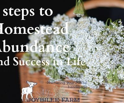 5 Steps to Homestead Mindset and Success in Life