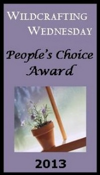 Wildcrafting Wednesday People's Choice Awards