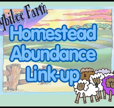 Homestead Abundance #9 Link Up