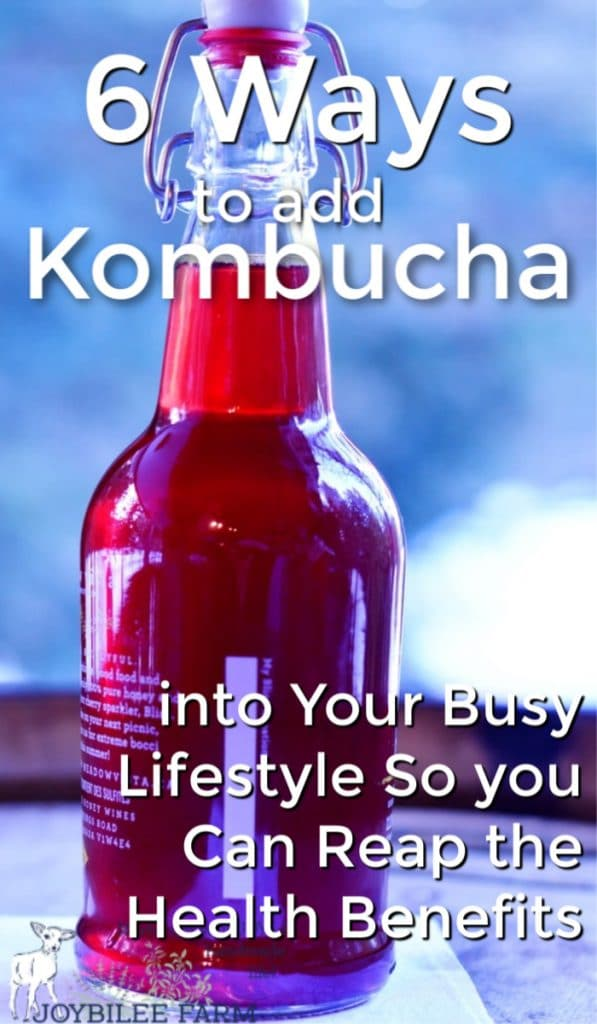 red bottle of kombucha
