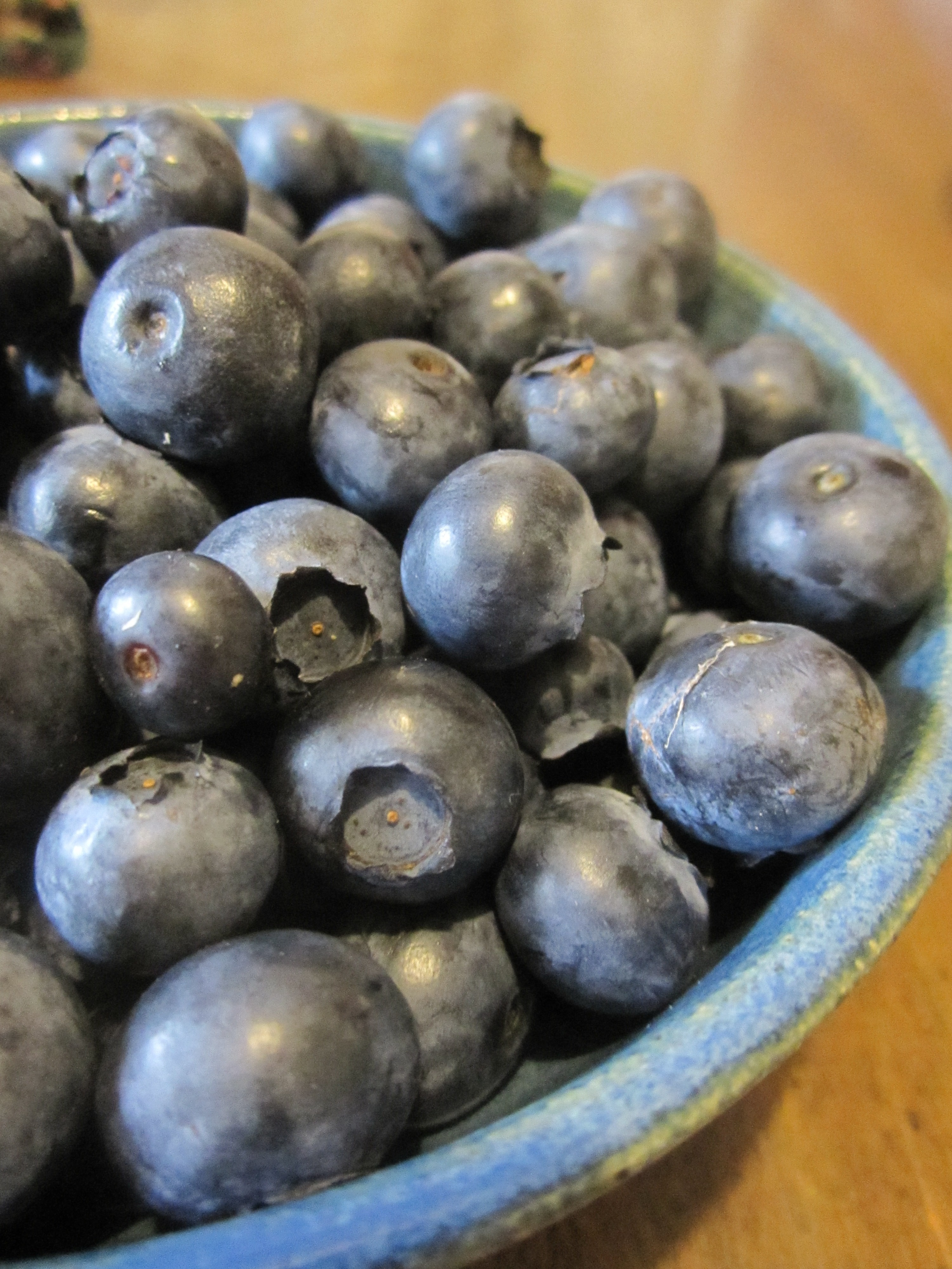 How to Grow Blueberries and Bilberries in Zone 4