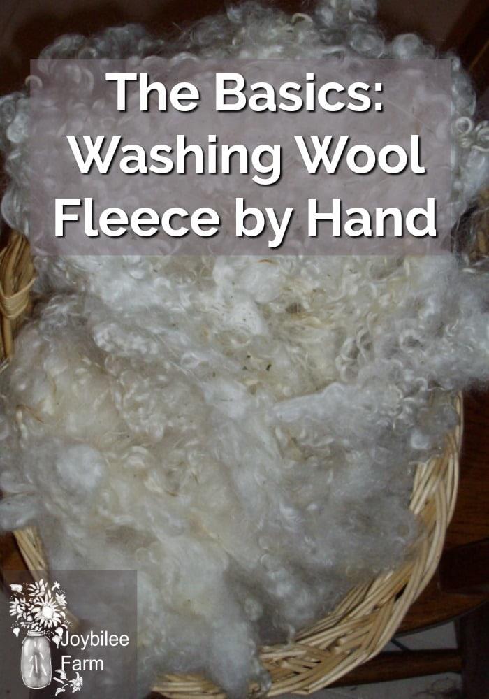 Clean wool fleece in a wicker basket