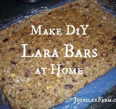 DIY Lara Bars — how to make raw fruit and nut bars