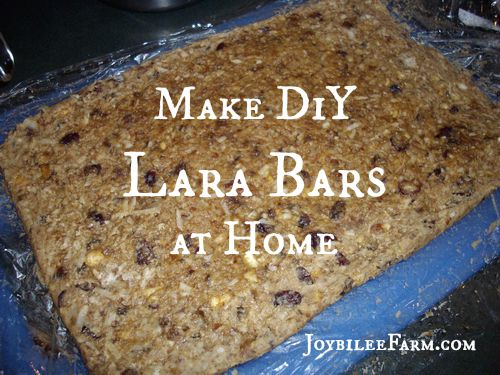 DiY Lara Bars at home -- Joybilee Farm.com