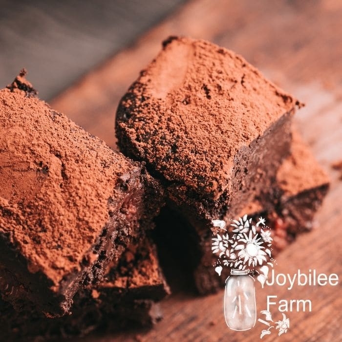 gluten free brownies topped with a dusting of cocoa powder on a wooden background