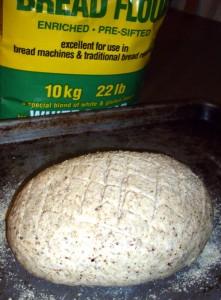 Bread rising lesson 1