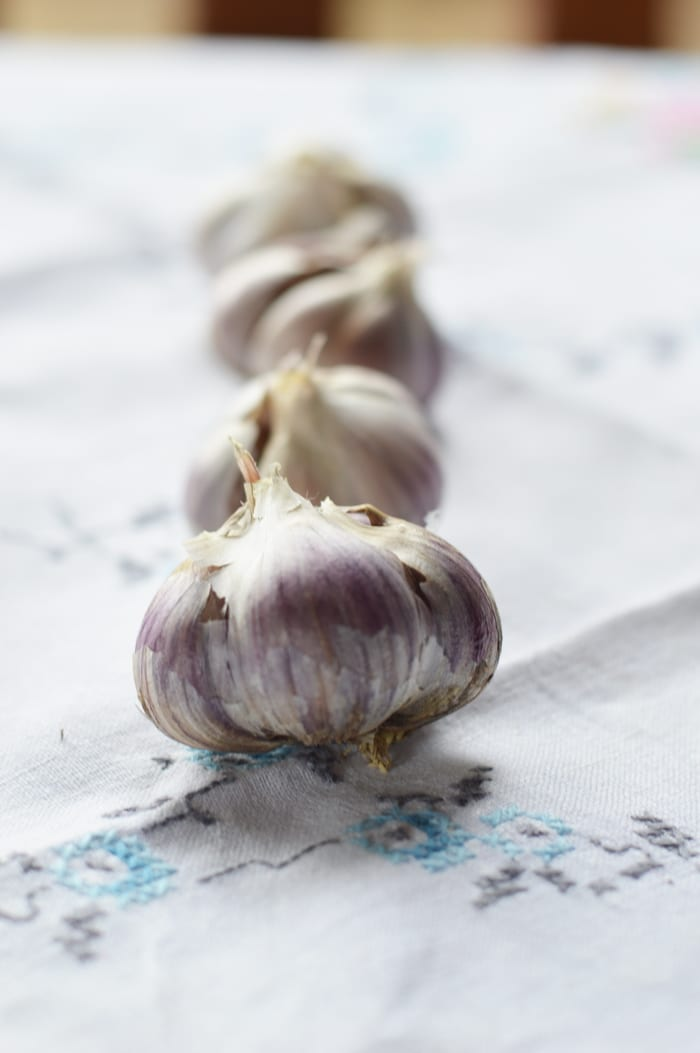 Roasted garlic is sweet, and complex, without the burning sensation of raw garlic. Roasted garlic has been cooked at low temperatures that caramelize the sugars, naturally occurring in all alliums. This gives roasted garlic a complex, delicious, warmth, not found on the supermarket shelf. Top chefs know this and incorporate roasted garlic in sauces, soups, dips, and meat dishes. But you don't have to spend big money at a fancy restaurant to enjoy the flavours of roasted garlic. It's easy to make it at home, and doesn't even take extra time.