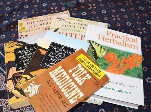herbal remedy books