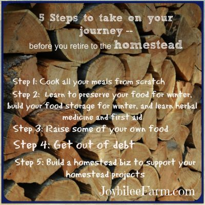 Don't wait till you retire to begin to live  your homestead dreams, part 2 of 3