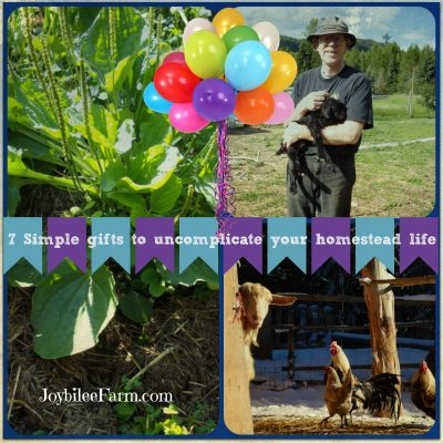 7 Simple Gifts to Uncomplicate your Homestead Life