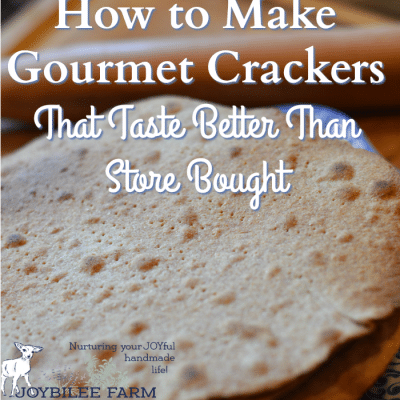 How to Make Gourmet Crackers That Taste Better Than Store Bought