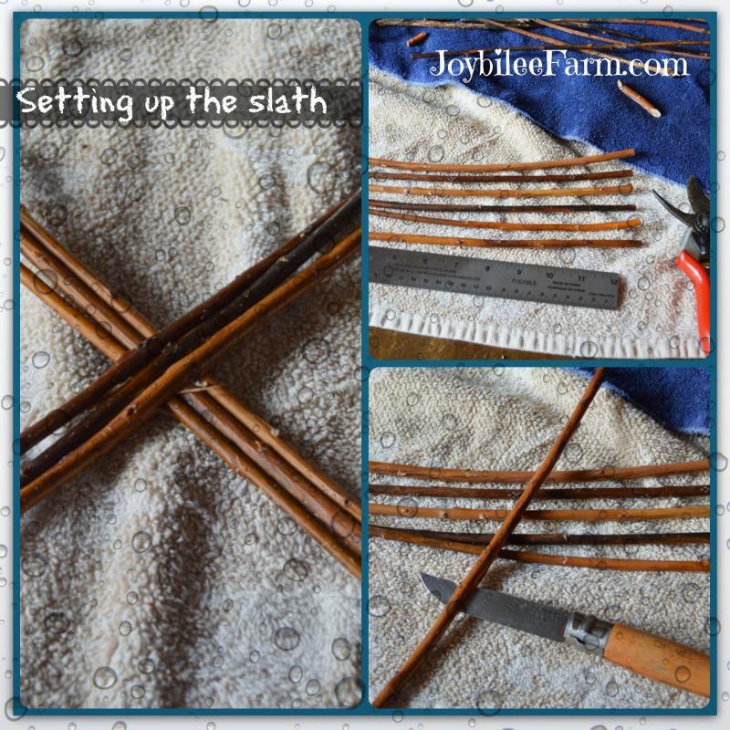 Willow basket weaving in progress - the slath