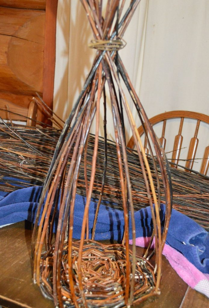 Willow basket weaving - upsett stage