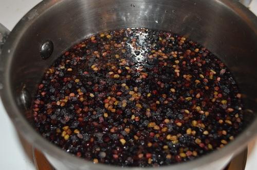 Elderberry syrup 2