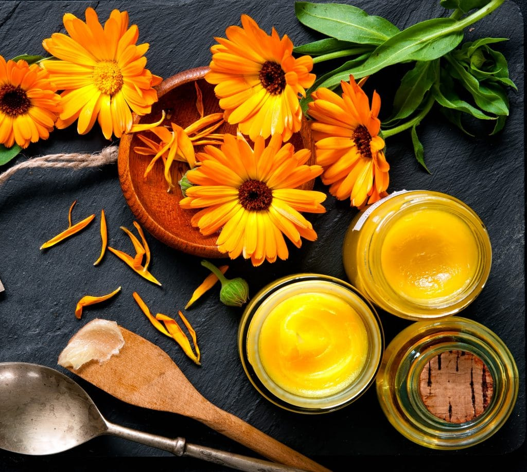 Make a Basic Herbal Ointment for Your First Aid Kit