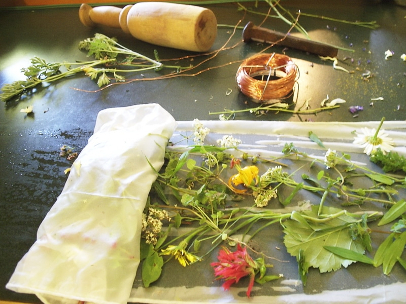 Making natural ink and dyes is all about playing around with colours. The process of taking plants and turning them into colour is wonderfully versatile, fun to work with, and is environmentally sound.