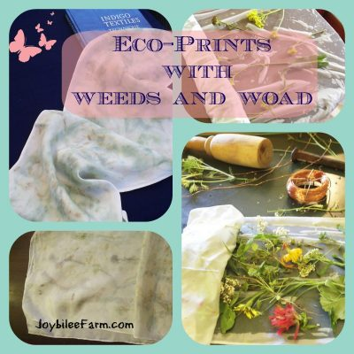 Contact Dyeing Eco-Prints