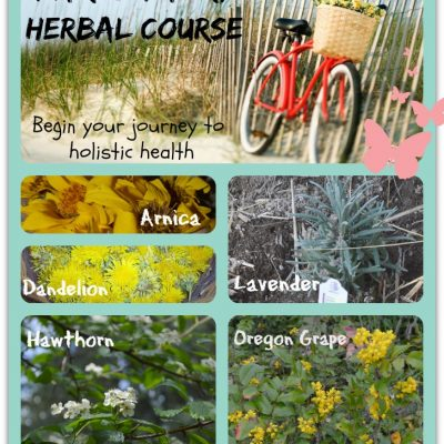 This could change your life.  Start building your herbal apothecary and learn about herbs now