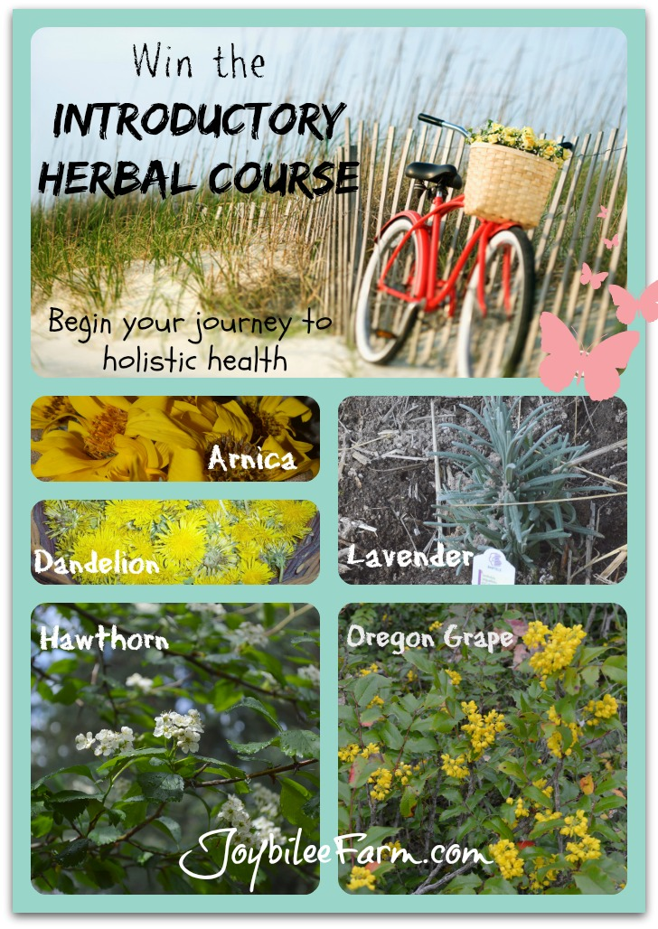 You could win the introductory Herbal Course