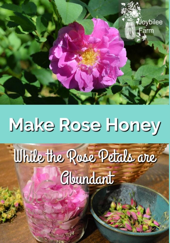how to make rose honey