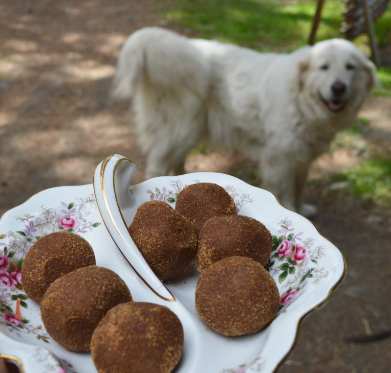 Zoom balls on a decorative plate and a dog in the background