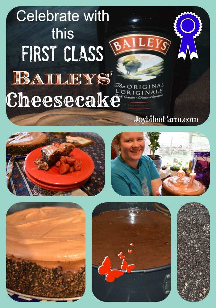 Baileys Chocolate' Cheesecake picture collage