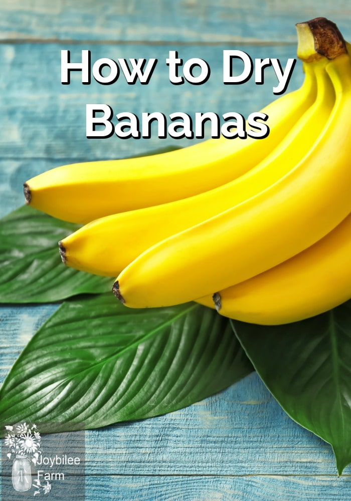 Fresh bananas on top of green banana leaves