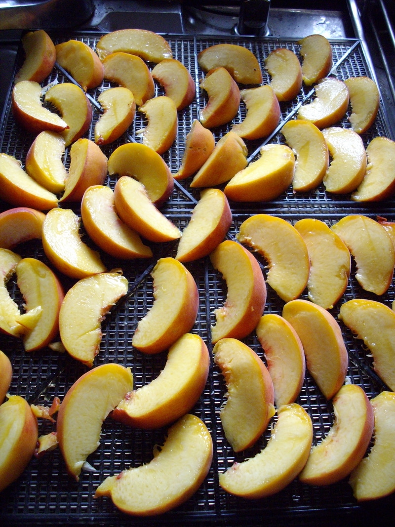 apples to dry