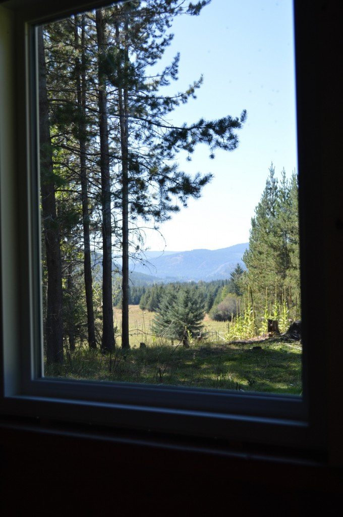 cottage window looking on pasture