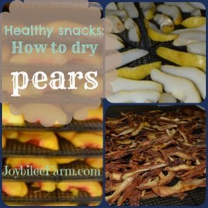 Photo collage of pears - fresh sliced and dehydrated slices