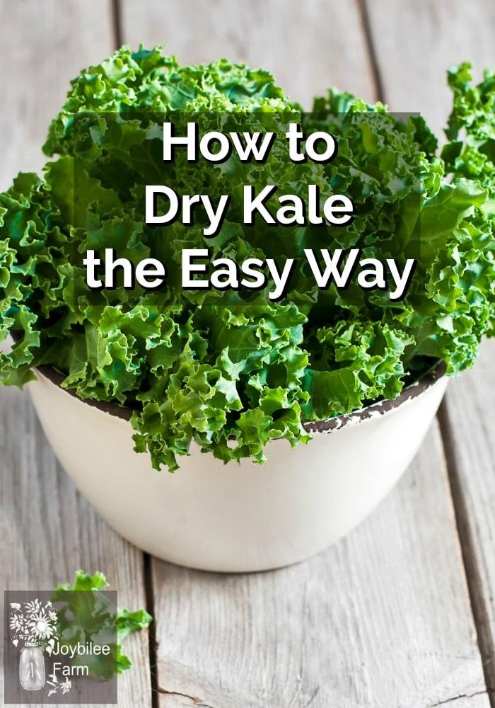 Fresh green kale in a white bowl