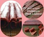 How to make crab apple fruit leather - Joybilee Farm