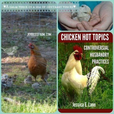 Raising your Backyard Chickens