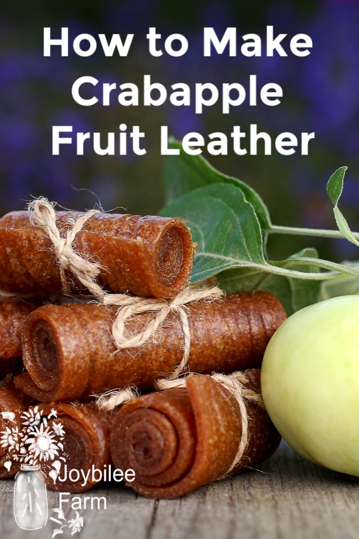 fruit leather bound with linen yarn next to an apple