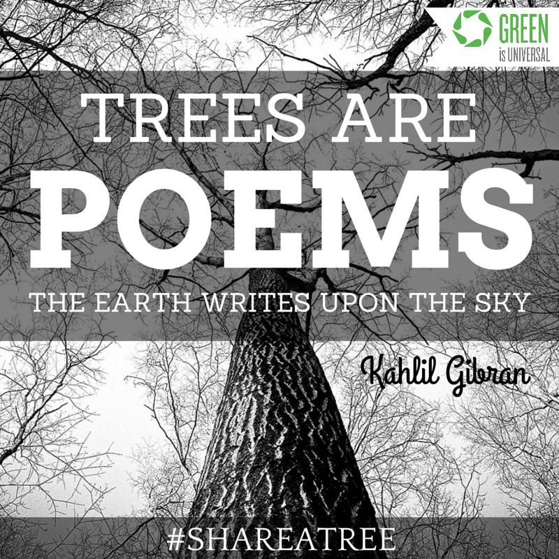 Share A Tree - Joybilee Farm