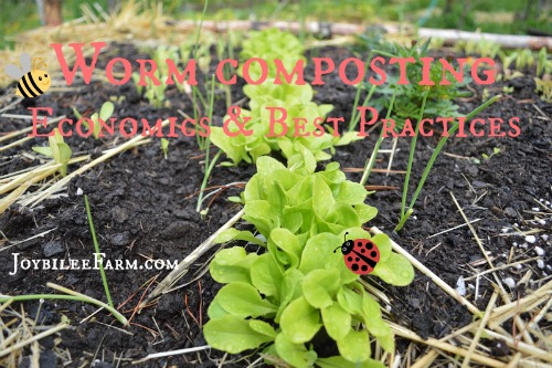 Worm Composting economics and best practices