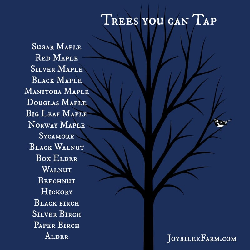 Trees you can tap