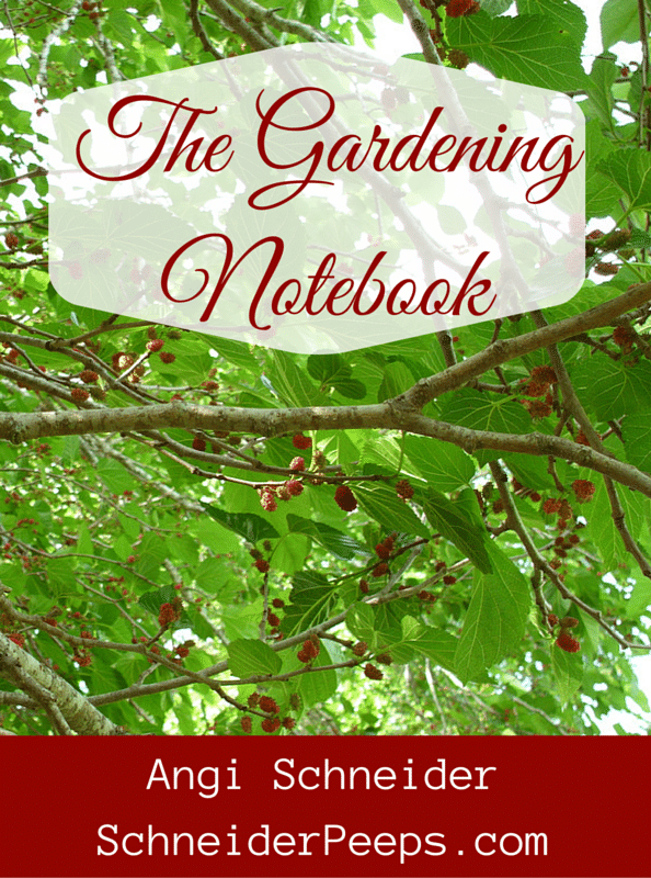 The Gardening Notebook book cover image